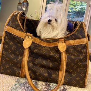 Authentic LV Dog Carrier
